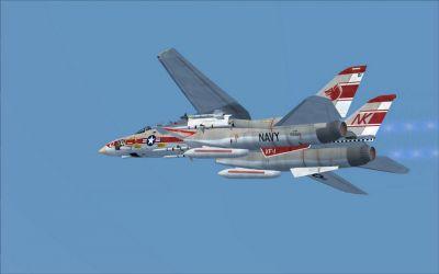 US Navy Grumman F-14A VF-1 in flight.