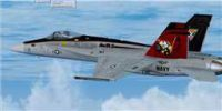 US Navy F/A-18C Tomcatters CAG in flight.