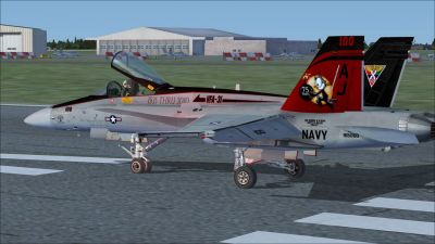 US Navy F/A-18C Tomcatters CAG on runway.