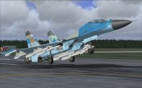 AFS Design's Su-27 for FS2004.