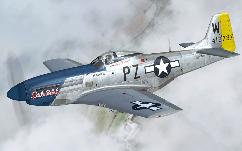 P-51 Mustang ([War planes in colour]) By William Newby Grant