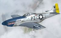 Warbirdsim's P-51D Mustang in flight.