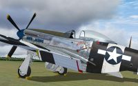 P-51 Mustang on ground.