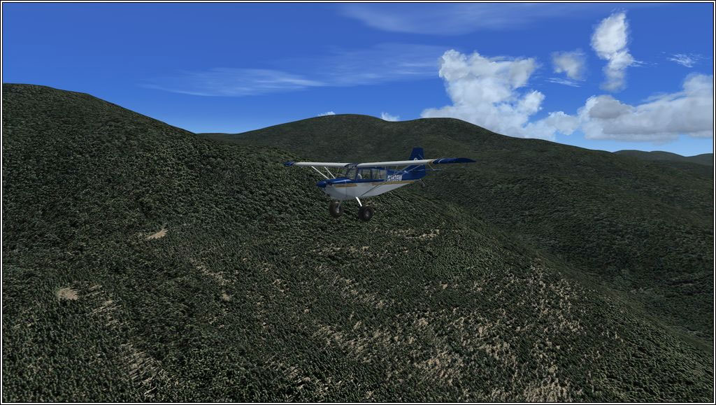 30cm Generic Project Textures Forests for FSX