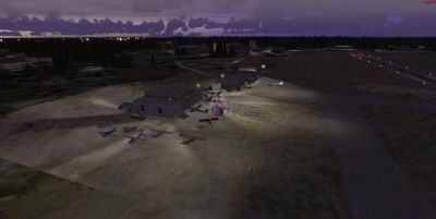 Night time screenshot of Mac Crenshaw Memorial Airport scenery.
