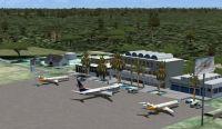Victoria Falls Airport Scenery.