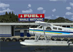 Screenshot of BC PNW Port McNeill Scenery.