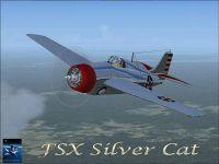 Screenshot of F4F Silver Cat in flight.