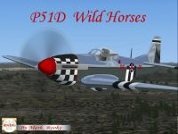 Screenshot of P-51D Wild Horses in flight.