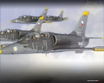 L-39C formation flying