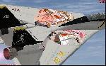 """""""Seto No Hanayome"""" F-14 Tomcat"""