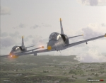 Two L-39C over Czech Republic