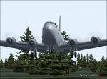 c-124 in trees