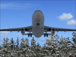 737-200 above trees