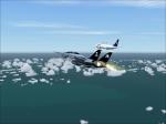 F-14 wingman