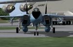 F14 Tomcat on grass