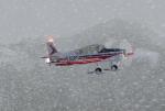 Alp flying
