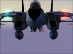 TIGERS VIPER 2 In a F-14