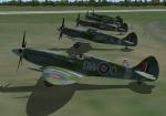 Spitfires Lined Up