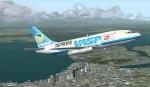 Boeing 737 Vaspex Cargo