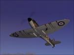 spitfire one.jpg