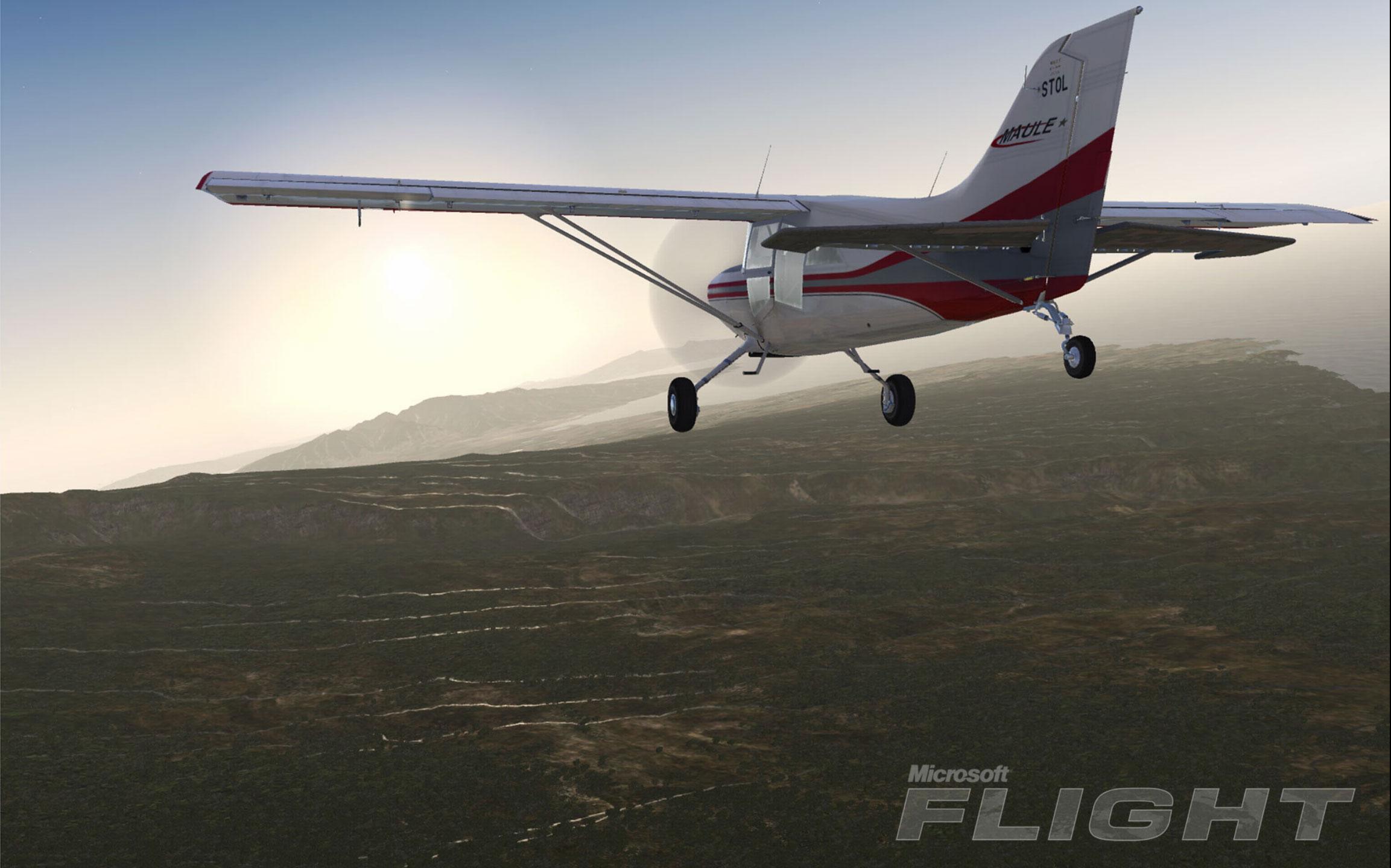microsoft-flight-screenshot-9.jpg