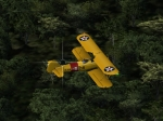 Hedgehopping in the Stearman