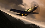 P-51 Mustang with Sunset