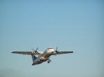 ATR42-Pluna
