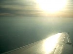 wingtip ( sunlight )